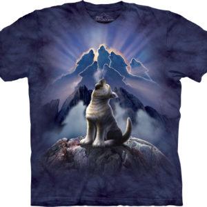 Печать на футболках в Сочи